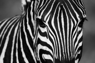 Südafrika Reisefotos Fotograf Herford MT-Fotos (11)