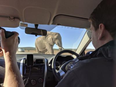 Südafrika Reisefotos Fotograf Herford MT-Fotos (27)