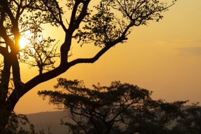 Südafrika Reisefotos Fotograf Herford MT-Fotos (5)